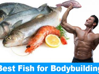 Best Fish for Bodybuilding