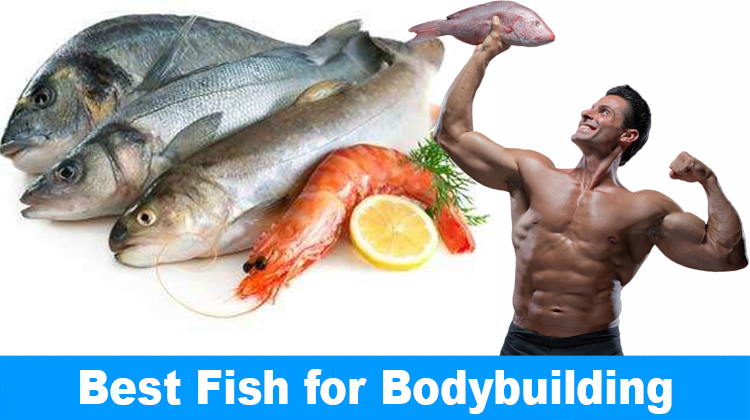 Best Fish for Bodybuilding – The Top 10 Protein Rich Fishes